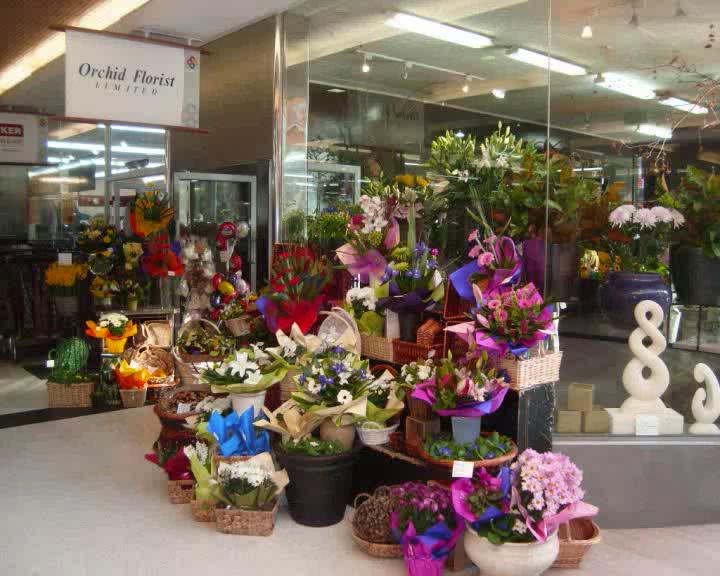 Florists in Dunedin - Orchid Florist
