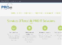 PRO IT Solution Ltd's website
